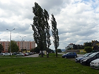 P1020470.jpg